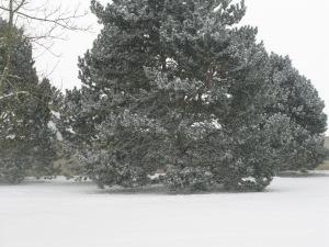 1_07-02-2012